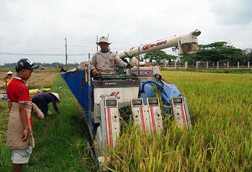 Gia tăng đầu tư cho nông nghiệp, nông thôn…, giải phóng hàng tồn kho. Ảnh: T.D