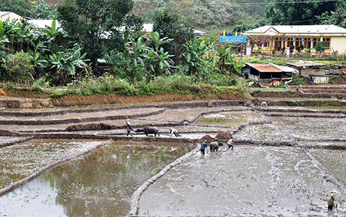Người dân vùng cao Tây Giang ra đồng làm đất chuẩn bị mùa vụ mới. Ảnh: VINH ANH