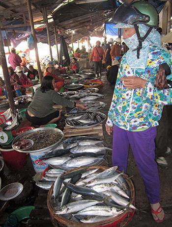 Đầu năm, cá biển về nhiều và giá cả cũng hạ hơn những ngày giáp tết.