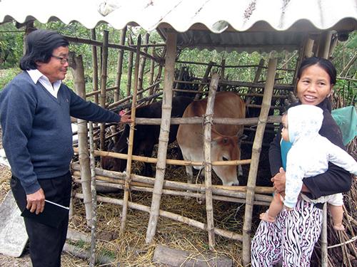 Niềm vui của bà Hợi khi nhận được bò.