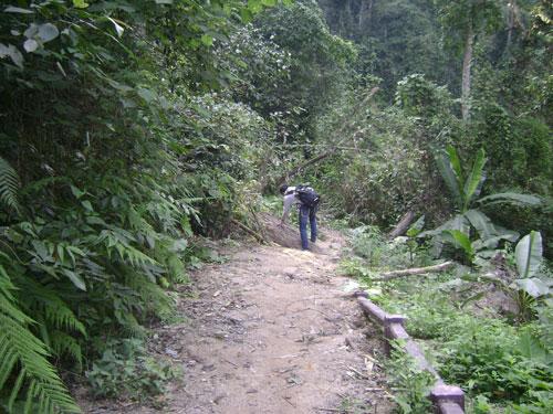 Đường vào thác Grăng bị sạt lở chưa khắc phục được.