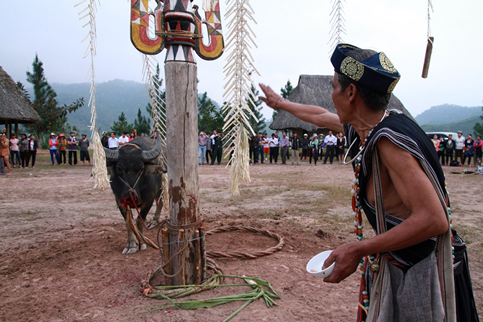 Watering-one of the important sub-ceremonies to Giang (God) before beginning the Buffalo stabbing ceremony
