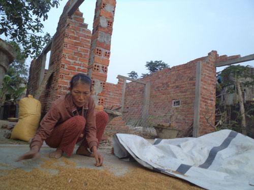 Chị Hường đem lúa ẩm mốc ra phơi. Ảnh: N.T.G
