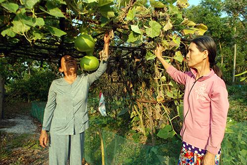 Bí thư Chi bộ thôn Nam Định - Nguyễn Thị Anh (bên trái) luôn được nhân dân địa phương tin yêu.