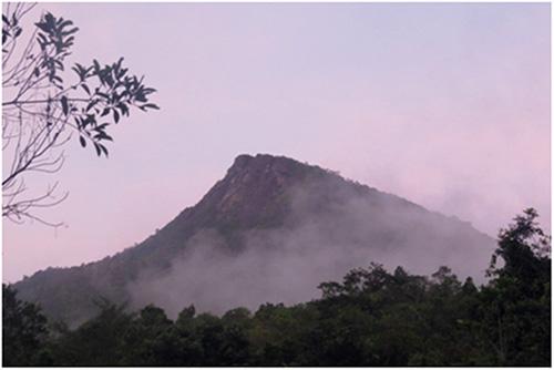 Đỉnh núi Hòn Đền mây trắng bao phủ quanh năm.