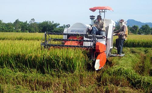 HTX đang dần khẳng định vai trò của mình trong việc phát triển kinh tế nông nghiệp, nông thôn trên toàn tỉnh.Ảnh: N.D
