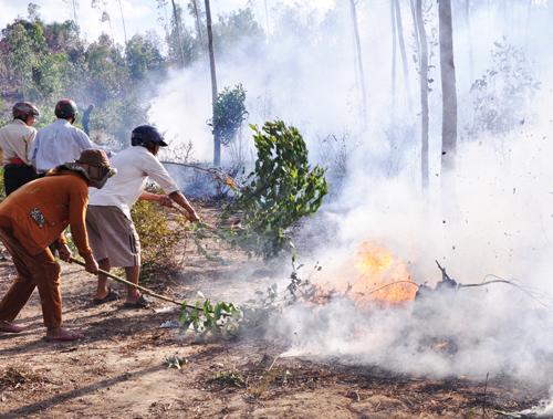 Hình ảnh vụ cháy rừng ở Duy Sơn cách đây 2 năm. Ảnh: T.H