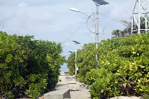 Hệ thống đèn điện năng lượng mặt trời trên đảo Nam Yết.