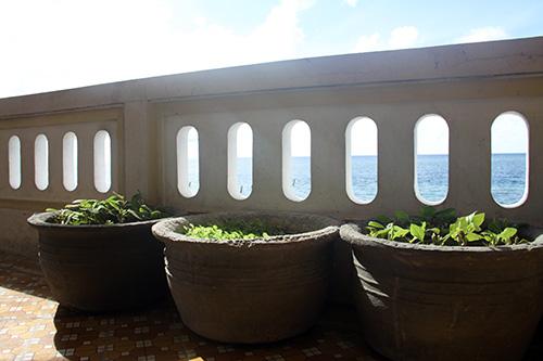 Những chậu rau trên đảo chìm Đá Lớn A.