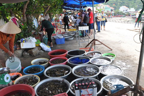 Many kinds of sea-food for tourists' choices