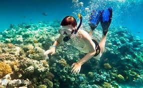 Hard coral reefs in Cham Island attract many tourists.