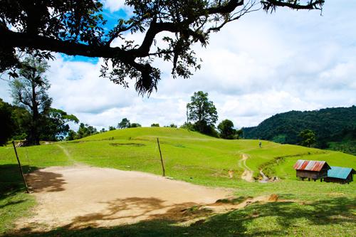Một góc thảo nguyên nhỏ ở Kon Bin.