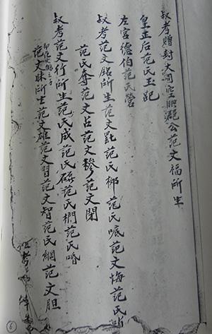 Gia phả họ Phạm ở Thăng Bình có ghi bằng chữ Hán, được dịch nghĩa: Hoàng chánh hậu Phạm Thị Ngọc Dẫy (hàng thứ 2 từ phải qua); Tả cung Đức Bá Phạm Thị Doanh (hàng thứ 3 từ phải qua).