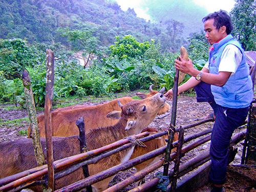 Muốn phát triển chăn nuôi phải thay đổi nhận thức người dân. Ảnh: Hoàng Thọ