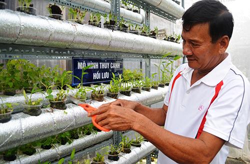 Ông Ngô Văn Hai giới thiệu về mô hình trồng rau thủy canh hồi lưu và thủy canh tĩnh tại gia đình mình. Ảnh: VINH ANH