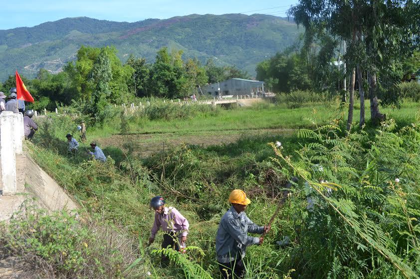 Từ sau lễ phát động này, người dân Đại Đồng sẽ ra quân diệt cây mai dương định kỳ tuần thứ ba của tháng.