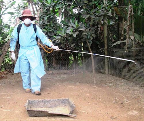 Phun tiêu độc chuồng trại thường xuyên để ngăn chặn mầm bệnh phát tán.Ảnh: N.S