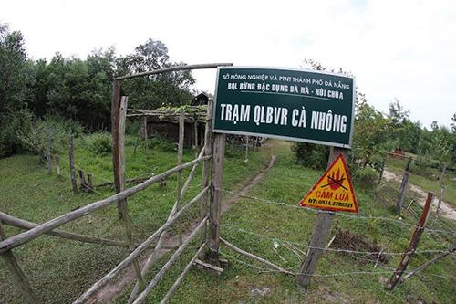 3 cán bộ trạm Cà Nhông bị kỷ luật, trong đó trưởng trạm Hồ Tấn Hai bị cách chức.