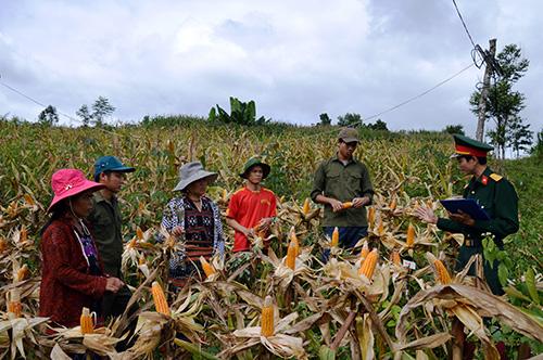 Thượng úy Trần Duy Toàn hướng dẫn bà con thôn Pa Lan, xã La Êê (Nam Giang) kỹ thuật trồng bắp lai NK54. Ảnh: TUẤN ANH