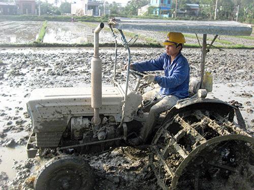 Với những chính sách hỗ trợ kịp thời, kinh tế tập thể ở Quảng Nam đang có những bước đột phá mạnh mẽ.  Ảnh: NGUYỄN DƯƠNG