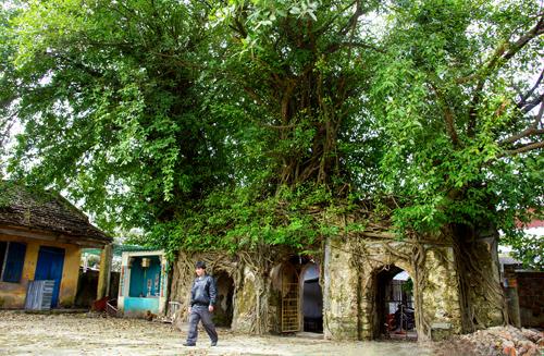 Cổng vào đình làng Tứ Bàn (Tam Kỳ).Ảnh: NGUYỄN TUẤN