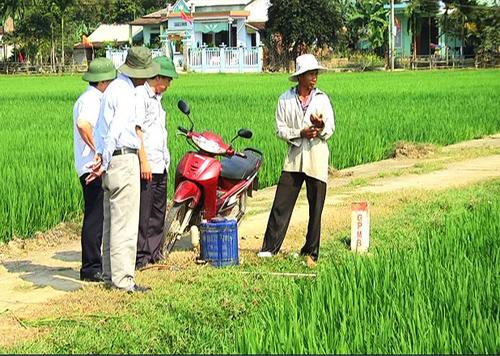 Ngành chuyên môn kiểm tra tình hình sản xuất nông nghiệp sau tết.