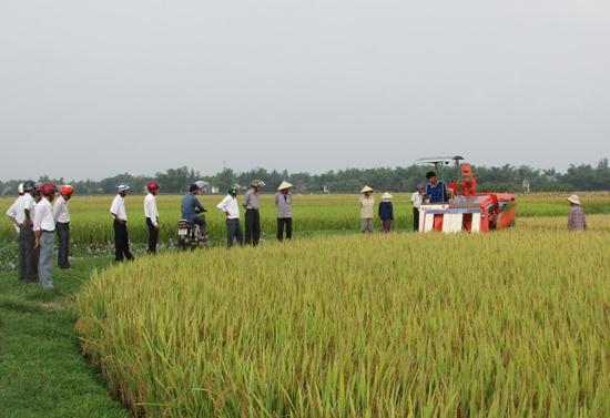 Cơ giới hóa trên ruộng đồng Bình Giang.