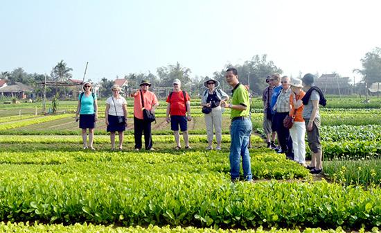 Sự hoạt động hiệu quả của Hiệp hội Du lịch Quảng Nam sẽ thu hút được sự quan tâm tham gia của các doanh nghiệp du lịch. Ảnh: VĨNH LỘC