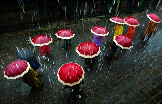 """Tác phẩm """"Thăm phố ngày mưa"""" của Thái Bích Thuận."""
