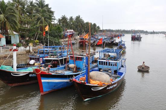 Trong tái cơ cấu ngành thủy sản sẽ giảm mạnh các phương tiện đánh bắt công suất nhỏ. Ảnh: TRẦN HỮU
