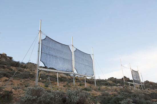 Hệ thống lấy nước từ sương rất đơn giản nhưng hiệu quả, đang được sử dụng ở nhiều nơi khô hạn.  ảnh: ntvdb