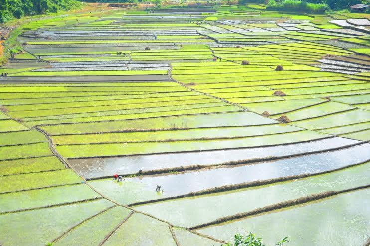 Năm 2010, ruộng bậc thang Chuôr ở thôn A Rầng 1 (xã A Xan, Tây Giang) được xếp hạng danh thắng cấp tỉnh.