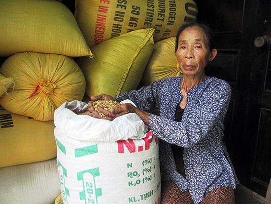Bà Nguyễn Thị Huệ (thôn Trà Kiệu Tây, xã Duy Sơn) mỏi mòn chờ doanh nghiệp đến thu mua lúa giống. Ảnh: T.S
