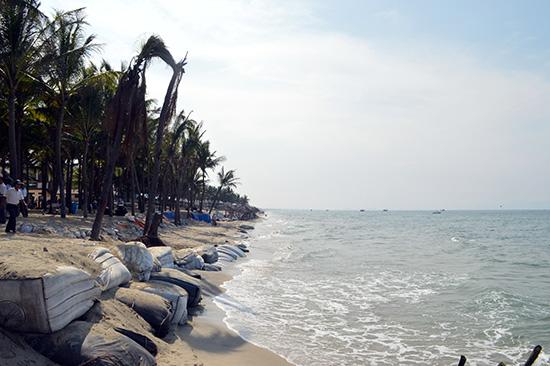 Sạt lở bờ biển đã trở thành thách thức lớn nhất của du lịch biển Hội An nói riêng và Quảng Nam nói chung.