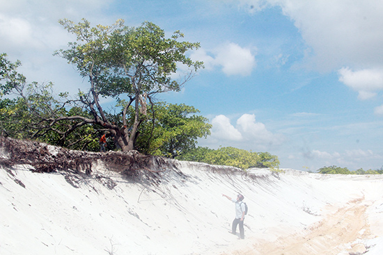 Việc khai thác cát trái phép đã ảnh hưởng đến rừng phòng hộ PASCA. Ảnh: H.P