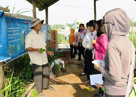 "A farmer ""lecturing"" on organic vegetable. Photo: H.Lien"