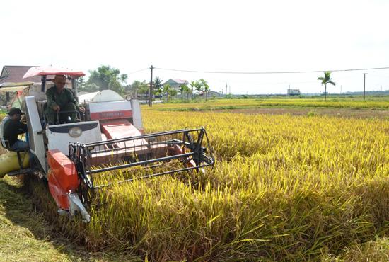 Thăng Bình chú trọng cơ giới hóa để xây dựng nông thôn mới và phát triển nông nghiệp.