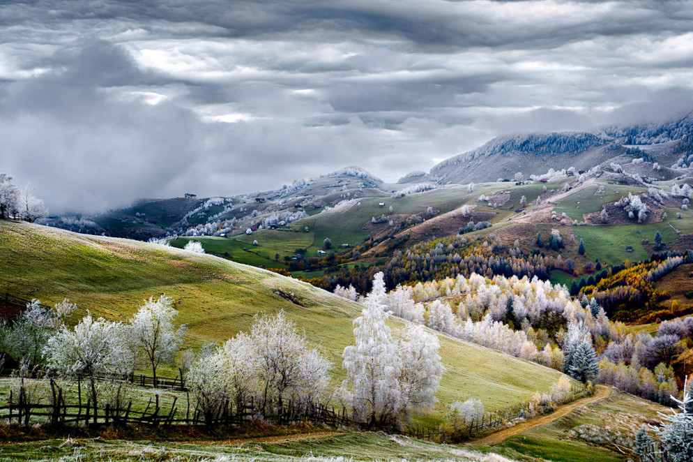 White frost over Pestera village in Romania. #  © Eduard Gutescu