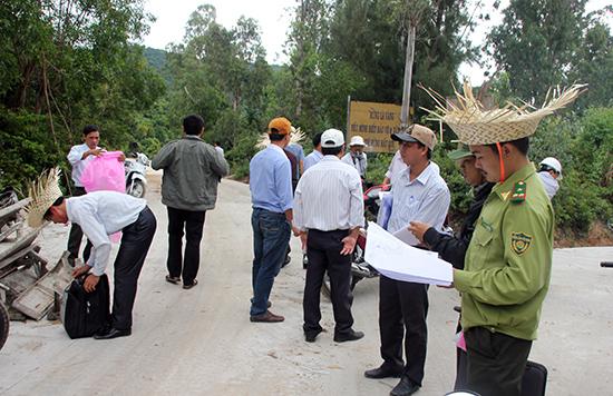 Khảo sát diện tích rừng ở Cù Lao Chàm bị ảnh hưởng khi xây dựng hệ thống lưới điện.