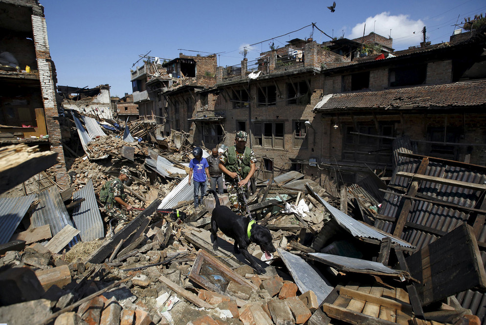Nepalese army personnel and a sniffer dog search for victims amidst the rubble of collapsed houses after Saturday's earthquake in Bhaktapur, Nepal, on April 27, 2015. # Navesh Chitrakar / Reuters