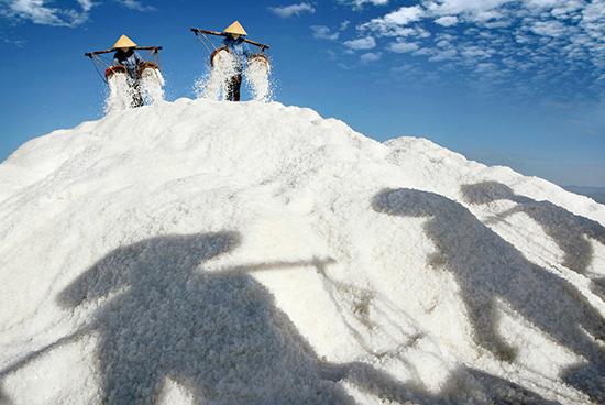 """""""Dưới nắng"""" của Đặng Kế Đông, một tác phẩm được chụp không qua dàn dựng và đoạt huy chương đồng IF năm 2015."""