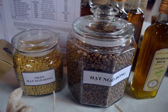 Hạt ngô đồng được đánh giá là có hàm lượng dinh dưỡng cao