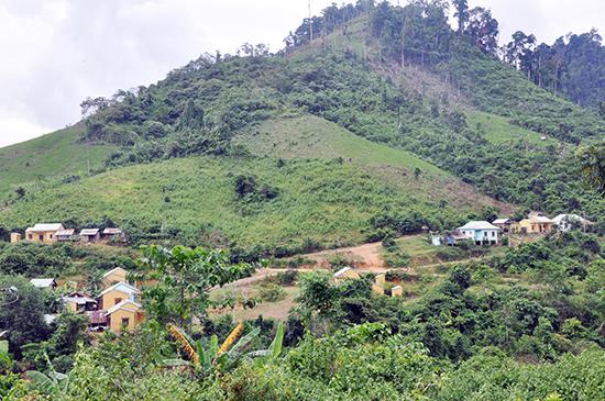 Tiến độ cấp giấy chứng nhận quyền sử dụng đất cho hộ gia đình, cá nhân nhìn chung còn chậm.  TRONG ẢNH: Nhiều hộ dân trong khu tái định cư xã Trà Bui (Bắc Trà My) chưa được cấp đất sản xuất và công nhận quyền sử dụng. Ảnh: H.P