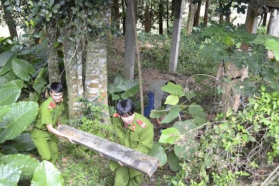 Đối tượng xả gỗ xuống bờ sâu nhằm phi tang tang vật.