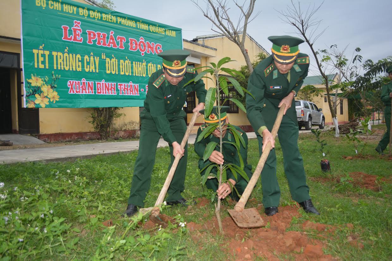 Hơn 1.000 loại cây ăn quả đã được  trồng ngay sau lễ phát động.