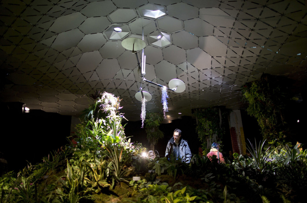 Visitors to the Lowline Lab inspect the plants growing under a solar canopy on February 27, 2016, in New York. Optical devices capture focus and distribute full spectrum light it into a solar canopy that then distributes the sunlight inside the warehouse. The Lowline Lab, an experimental phase in the creation of an underground park on the Lower East Side of Manhattan, is free and open to the public on weekend days through June 2016. #  Mary Altaffer / AP
