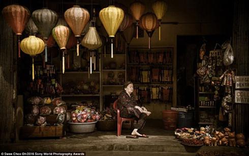 Bức ảnh chụp một bà cụ đang ngồi trông cửa hàng đèn lồng ở Hội An, Việt Nam trong buổi sáng sớm đã giành chiến thắng ở hạng mục Nghệ thuật & Văn hóa (thuộc giải Mở). Bức ảnh được thực hiện bởi nữ nhiếp ảnh gia Swee Choo Oh đến từ Malaysia.
