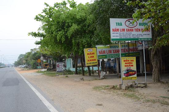Giới thiệu sản phẩm rượu nấm lim xanh trên đường Nguyễn Hoàng, TP.Tam Kỳ.