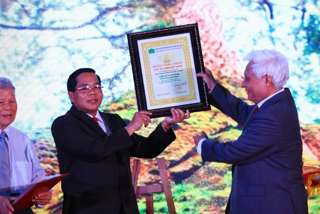Ông Bh ling Mia - Chủ tịch UBND huyện Tây Giang đón nhận bằng chứng nhân Cây di sản Việt Nam đối với 725 cây pơmu. Ảnh: C.N