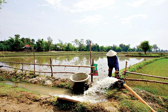 Người dân tận dụng nguồn nước ao hồ để bơm cho đồng ruộng. Ảnh: PHƯƠNG THẢO